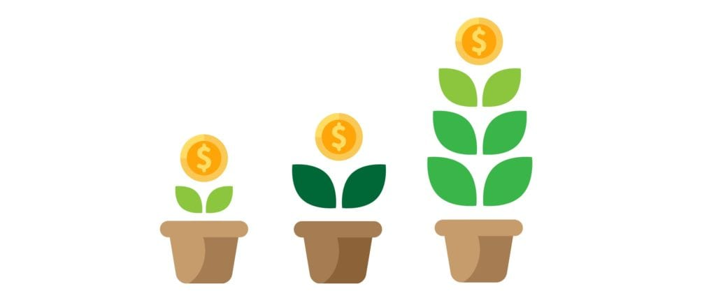Promote and monetize your design brand. Flower pots illustration.